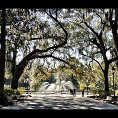 Forsyth Park Fountain in Savannah, GA Savannah Georgia, Visit Savannah, Downtown Savannah, Savannah Chat, Forsyth Park, Georgia On My Mind, Places To See, Places To Travel, Places Ive Been