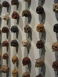 Dead Or Alive - Spice Skulls - Helen Altman