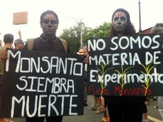 Fotogalería: Marcha contra Monsanto en Puerto Rico | Mi Puerto Rico Verde