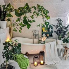 bathroom decoration 33 The Best Jungle Bathroom Decor Ideas To Get a Natural Impression - Whether creating a themed bathroom for the kids or you if young at heart and fun loving then you cant go wrong with cute monkeys and all their safari. Jungle Bathroom, Jungle Room, Bathroom Trends, Bathroom Ideas, Bathroom Goals, Bling Bathroom, Bathroom Inspiration, Bathroom Vinyl, Bathroom Rack