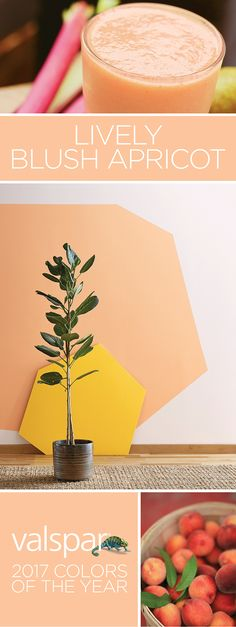 """""""Sheer, lush and layered, this glowing apricot boosts energy and positivity. One of 12 Valspar 2017 Colors of the Year: Coral Wisp at Independent Retailers. Peach Paint Colors, Best Bedroom Paint Colors, Room Colors, House Colors, Indie Hipster Room, Lush, Valspar Colors, Cream Bedding, Color Of The Year 2017"""