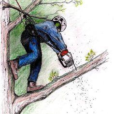 Arborist Tree Surgeon Lumberjack Logger Stihl chainsaw Husqvarna