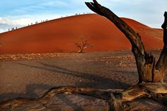 dunes and people - people and dunes, Sossusvlei, Namibia