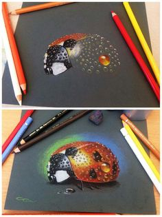 Step by step Ladybug - colour pencils on paper My facebook - https://www.facebook.com/ARTbyC.Ciprian