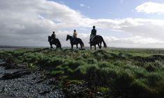 Small Island, Trekking, Horses, Mountains, Website, Travel, Viajes, Traveling, Horse