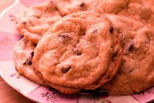 Low-Carb Chip Cookies Recipe (e-book) - Auction Starts at One Cent
