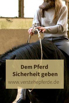 Dem Pferd Sicherheit geben: Es kommt auf eine gute Vorbereitung an. Horsemanship, Reiten, Bodenarbeit