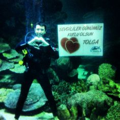 Valentines day @Turkuazoo Akvaryum aquarium