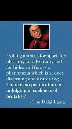 Killing animals for sport, pleasure, hides & furs is not justified. The Dalai Lama. Great Quotes, Inspirational Quotes, Vegan Quotes, Stop Animal Cruelty, Thats The Way, Statements, Dog Training Tips, Animal Quotes, Animal Rights