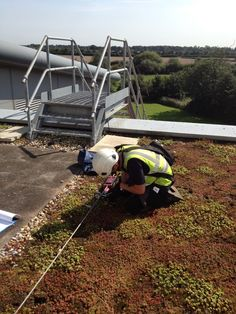 Great day for our team, testing & inspection of fall protection systems on a Government building in the Midlands with green roof.