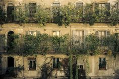 Old town's windows by Enrico Morani on 500px