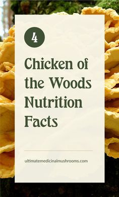 Not only does Chicken of the Woods taste delectable but did you know it's also packed with nutrients and vitamins? Read on to find out why this mushroom is a great vegan alternative to chicken meat. | Discover more about medicinal mushrooms at ultimatemedicinalmushrooms.com #chickenofthewoodsbenefit #chickenofthewoodsrecipe #chickenofthewoodshowtocook #medicinalmushrooms #wildmushrooms Growing Mushrooms, Wild Mushrooms, Stuffed Mushrooms, Fresh Chicken, Lemon Chicken, Chicken Of The Woods, Mushroom Varieties, Mushroom Hunting, Meat Chickens