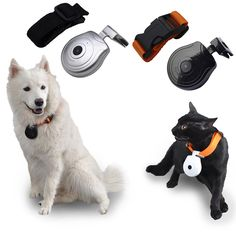 New Pet Dog Collar With Timing Camera Anti Lost with LCD display screen Show Dog Cat Training Taking Photo supplies Accosseries Pet Dogs, Dog Cat, Umbrella Corporation, Photo Supplies, Pet Carriers, Cat Collars, Display Screen, Video Camera, Pet Products