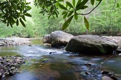 Otter Creek Wilderness Area in WV. Tom and I hiked the trails along the river and climbed out and had lunch on a boulder much like this one! Very serene...