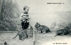 """The Lion Tamer    Here is an old French postcard from my collection of a young """"lion tamer"""" who performed with a traveling circus that was produced sometime before 1910..."""