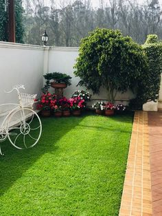 Applying one of modern mini garden design ideas to your garden is a great choice. Try to make your mini garden looks stunning and stylish. Small Backyard Landscaping, Backyard Garden Design, Small Garden Design, Garden Landscape Design, Landscaping Ideas, House Garden Design, Landscape Steps, Mailbox Landscaping, Landscaping Software