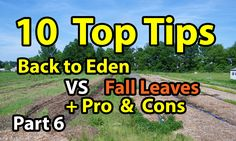 Best 10 TIPS Back to Eden Gardening 101 Method with Wood Chips VS Leaves...