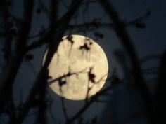 moon pic I took :)