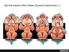 Die drei weisen Affen haben Zuwachs bekommen..   DEBESTE.de, Lustige Bilder, Sprüche, Witze und Videos