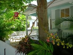 Key West, Florida is an exotic tropical garden. ~j~4
