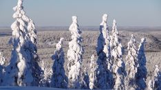 View from the top of Ritavalkea Ski Resort in Pello in Lapland - Travel Pello - Lapland, Finland Lapland Finland, Arctic Circle, Cross Country Skiing, Winter Is Here, Winter Activities, Natural Wonders, Wilderness, Mount Rushmore, Travel Destinations
