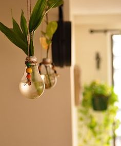 Rang-Decor {Interior Ideas predominantly Indian}: DIY~ Bulb Plant Holders Light Bulb Plant, Hanging Light Bulbs, Garden Bulbs, Planting Bulbs, Facade Lighting, Plant Lighting, Modern Kitchen Lighting, Outdoor Lighting Landscape, Outdoor Light Fixtures