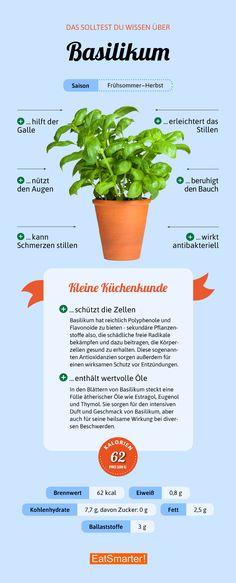 Das solltest du über Basilikum wissen | eatsmarter.de #basilikum #kräuter #infografik Healthy Living Quotes, Basil, Lifestyle, Healthy Foods, Knowledge, Projects, Tips