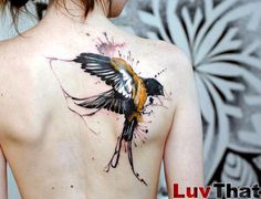 amazing_watercolor_tattoo_bird_sparrow_black_and_gold_on_back.jpg (800×613)