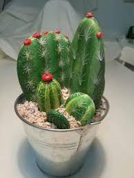 DIY Painting Cactus Rock Art Ideas - Balcony Decoration Ideas in Every Unique Detail Cactus Rock, Stone Cactus, Painted Rock Cactus, Painted Rocks, Cactus Cactus, Indoor Cactus, Cactus Painting, Pebble Painting, Pebble Art