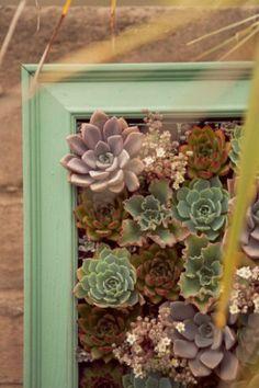 Inspiration : les plantes succulentes pour le mariage