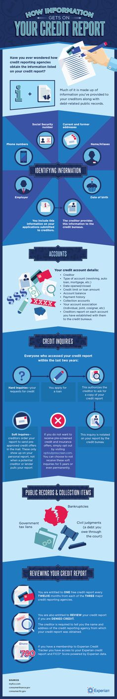 How Information Gets on Your Credit Report | Personal Finance | Credit | Privacy | Money | Experian [Premium+ Infographic]