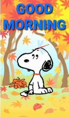 Good Morning Greeting Cards, Good Morning Greetings, Good Morning Wishes, Morning Messages, Good Morning Quotes, Good Morning Snoopy, Good Morning Good Night, Good Morning Images, Snoopy Love