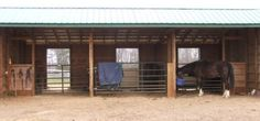 Run in shed with gates for stalls. Can make runs out the front as well.