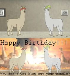 Llamas with Hats rules! LOL send me your finished resul. Llamas With Hats: B-Day Card 1 Charlie The Unicorn, Funny Cute, Hilarious, Llamas With Hats, Friends Laughing, Funny Comments, Stupid Funny Memes, Nerdy, Happy Birthday