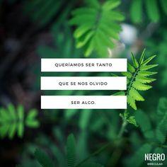 #frase #quote #frasedeamor #negroirregular