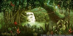 Tropical Jungle Backdrops For Events Tropical Birds, Image Types, Google Images, Backdrops, Australia, Mural Ideas, Plants, Painting, Classroom