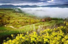 Morning in Apuseni Mountains © photo by Razvan Vitionescu
