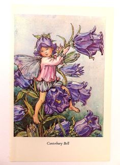 Canterbury Bell Fairy Picture, Vintage Bookplate, Flower Fairy, nursery art, child's bedroom