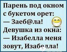 Jokes, Fan, Humor, Chistes, Cheer, Memes, Hand Fan, Ha Ha, Humour