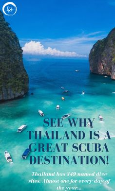 Scuba yachts are for scuba diving lovers. For charter boats and best places to dive in Thailand. See whale sharks on your next thailand scuba diving trip. Scuba Diving Thailand, Best Scuba Diving, Scuba Destinations, Charter Boat, Days Of The Year, Luxury Yachts, Thailand Travel, Shark, Vacation
