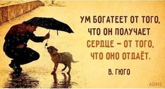 """""""quotations""""цитаты""""quote""""Quotes about Relationships,motivational quotes and Best Quotes here. Motivational Quotes For Relationships, Zen Quotes, Wise Quotes, Words Quotes, Relationship Quotes, Wise Words, Phrase Of The Day, Wealth Quotes, Russian Quotes"""