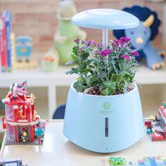 Hot Blue  Indoor Smart Led Light Hydroponic Garden With 3 or 6 Adjustable Pots