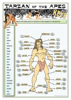 TARZAN - PARTS OF THE BODY