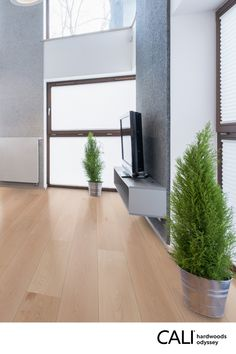 Going on now until 1/7! -Top beauty layer of premium American Maple -Green to the Core™ with sustainable foundation -Responsibly harvested from Lacey Act compliant forests -UV oil finish highlights natural knots & wood grain -Backed by a 50-year residential warranty Give us a call at 1(888) 788-2254 to claim this offer!