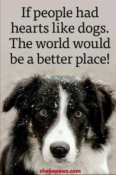 I must agree! !