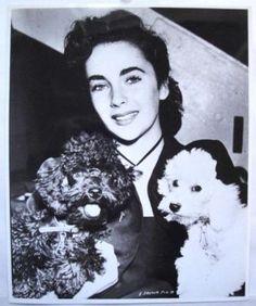 Liz Taylor - 1950