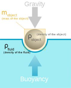 In physics, buoyancy (play /ˈbɔɪ.ənsi/) is a force exerted by a liquid, gas or other fluid, that opposes an object's weight. In a column of fluid, pressure increases with depth as a result of the weight of the overlying fluid. Thus a column of fluid, or an object submerged in the fluid, experiences greater pressure at the bottom of the column than at the top. This difference in pressure results in a net force that tends to accelerate an object upwards.