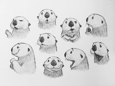 Tiere cartoon Otter Expressions by Jason Dreamer - Drawing Cartoon Characters, Character Drawing, Character Illustration, Drawing Cartoon Animals, Drawing Cartoons, Cartoon Art, Animal Sketches, Animal Drawings, Otter Cartoon