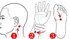 Stimulează aceste puncte ca să elimini durerile din organism Trigger Points, Snoopy, Youtube, Mudra, Sport, Healthy, Massage, Insomnia, Dots