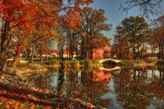 poland in autumn - Szukaj w Google